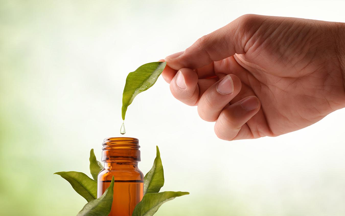productos de herbolario y herbodietetica